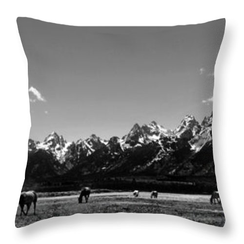 Grand Throw Pillow featuring the photograph Oblivious by Dan Wells