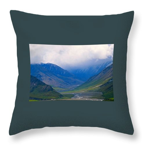 Alaska Throw Pillow featuring the photograph Obscure Arrogance by Michael Anthony