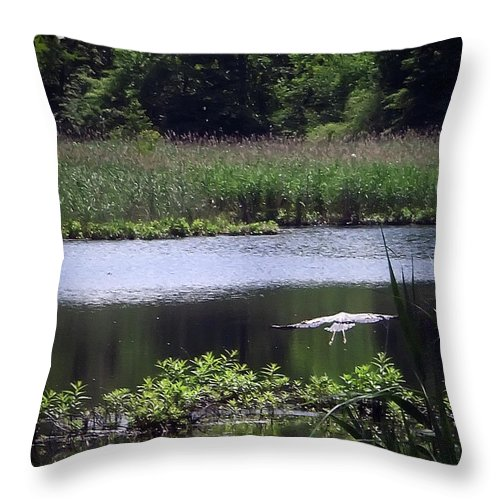 2d Throw Pillow featuring the photograph Old Fishing Hole by Brian Wallace