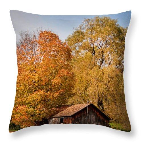 Shed Throw Pillow featuring the photograph Old Shed by Cindy Haggerty
