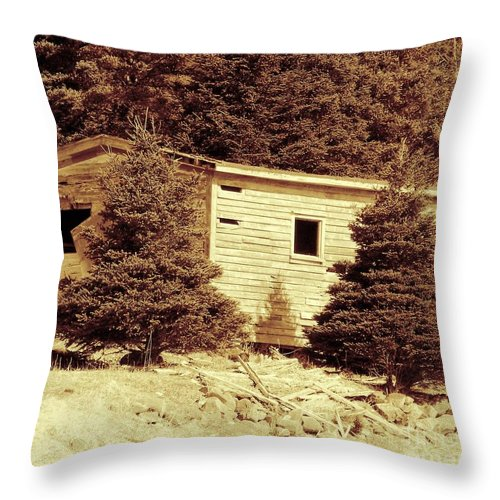 Old Shed Throw Pillow featuring the photograph Old Shed Nothing Left But Memories by Barbara Griffin