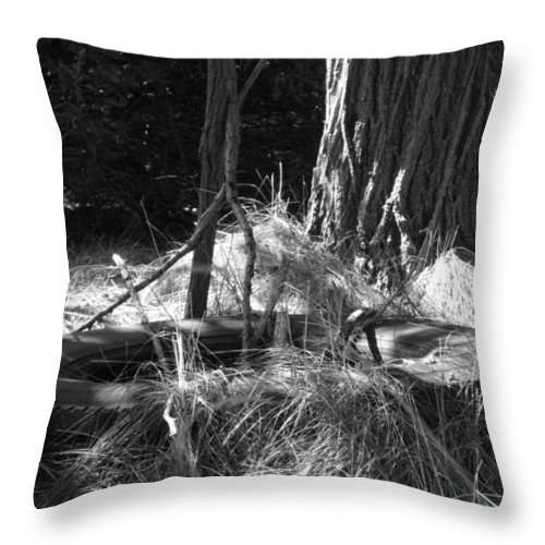 Black And White Throw Pillow featuring the photograph Old Tire by Michele Nelson