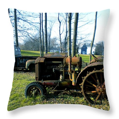 Farm Throw Pillow featuring the painting Oldie Goldies by Renate Nadi Wesley