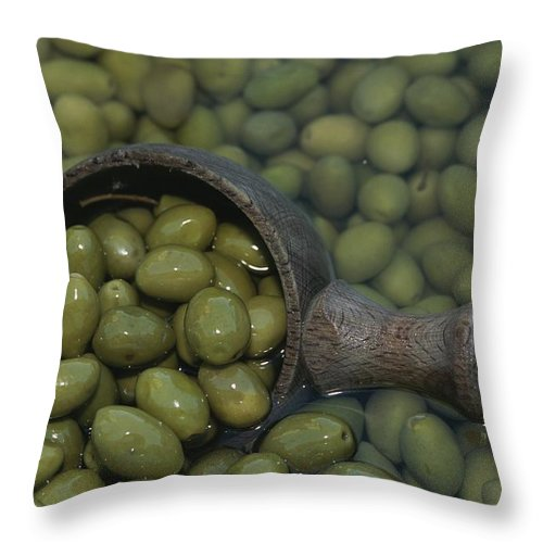 Plants Throw Pillow featuring the photograph Olives Being Processed In Provence by Nicole Duplaix