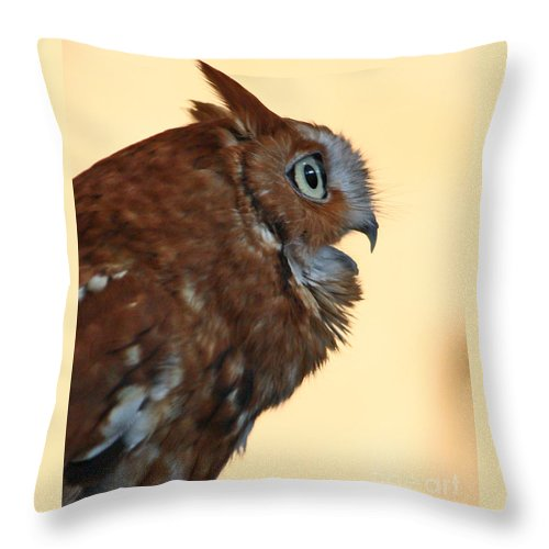 Owl Throw Pillow featuring the photograph OMG by Lloyd Alexander