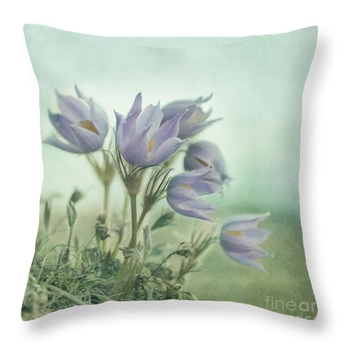 Recreation Site Throw Pillow featuring the photograph On The Crocus Bluff by Priska Wettstein