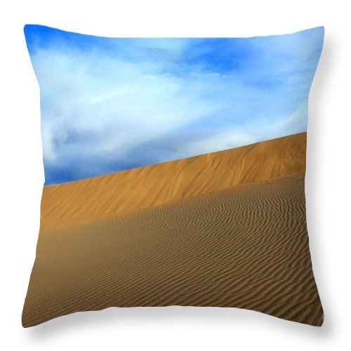 Sand Throw Pillow featuring the photograph On The Edge by Bob Christopher