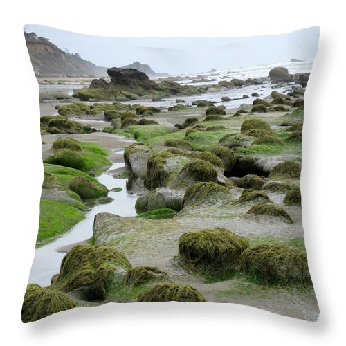 Ona Throw Pillow featuring the photograph Ona Beach 2 by Linda Hutchins