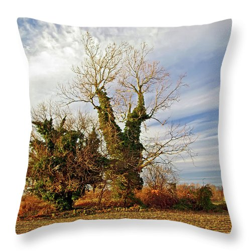 2d Throw Pillow featuring the photograph Once Was Home by Brian Wallace