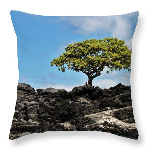 Tree Throw Pillow featuring the photograph One by Caroline Lomeli