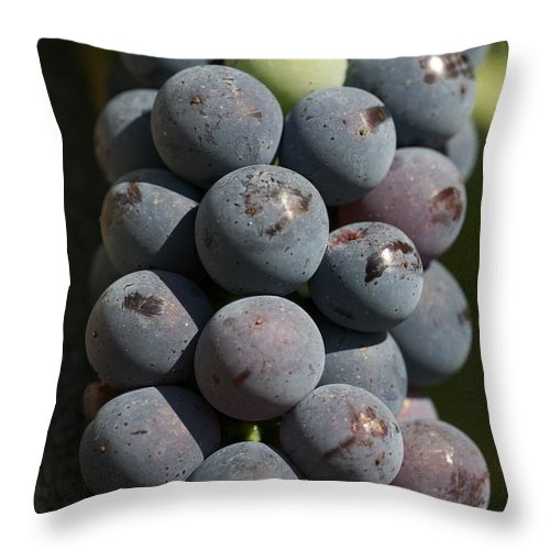 Nobody Throw Pillow featuring the photograph One Green Grape Stands Out In A Bunch by Heather Perry