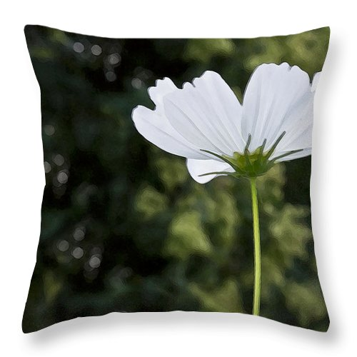 Wildflower Throw Pillow featuring the photograph One Wildflower by Angelina Vick