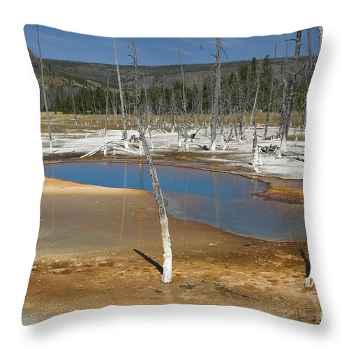 Bronstein Throw Pillow featuring the photograph Opalescent Pool Of Yellowstone by Sandra Bronstein