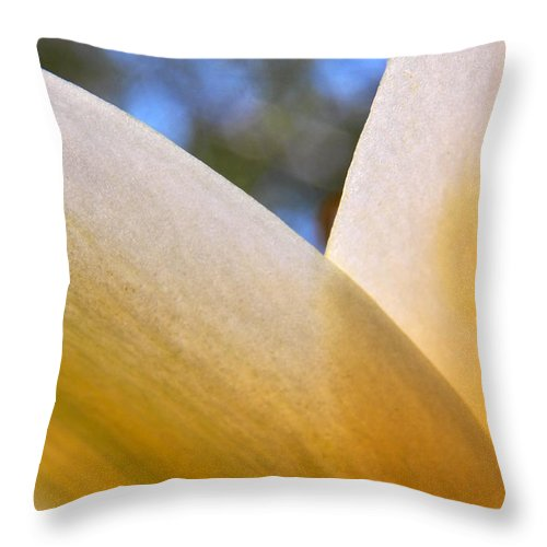 Flowers Throw Pillow featuring the photograph Opaque Yellow by Corinne Elizabeth Cowherd