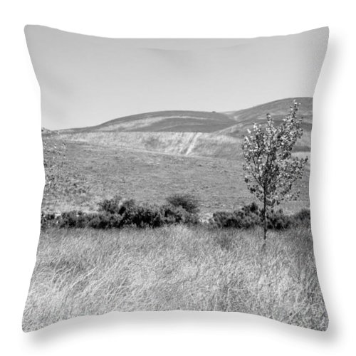 Los Alamos Throw Pillow featuring the photograph Open Hills by Kathleen Grace