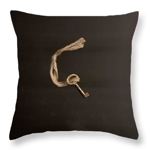 Photo Throw Pillow featuring the photograph Open Or Lock by Brian Kirchner