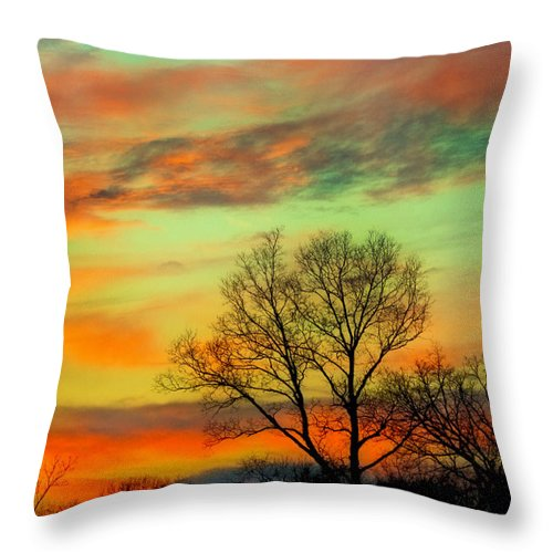Orange Throw Pillow featuring the photograph Orange And Blue Sky by Sheri Bartoszek