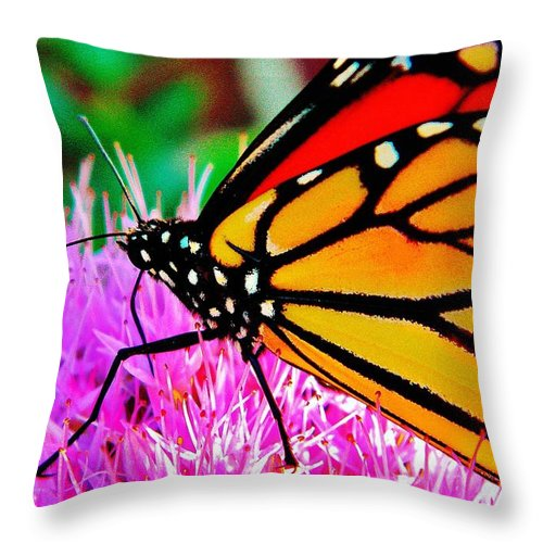 Nature Throw Pillow featuring the photograph Orange by Chris Berry