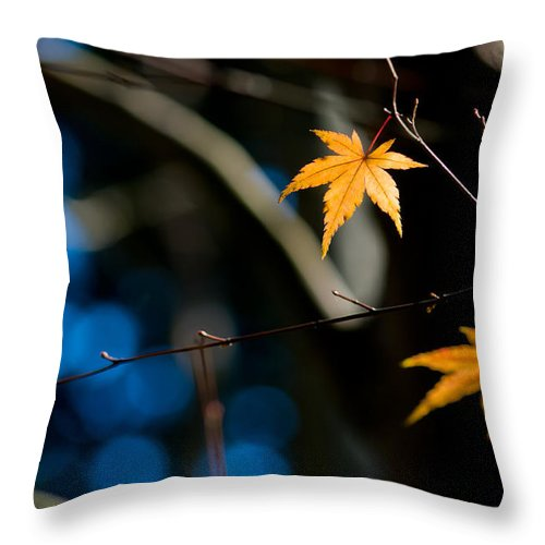Abstract Throw Pillow featuring the photograph Orange Leaf On A Tree In Winter Setting by U Schade