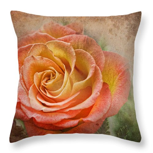 Rose Throw Pillow featuring the photograph Orange Rose by Norma Warden