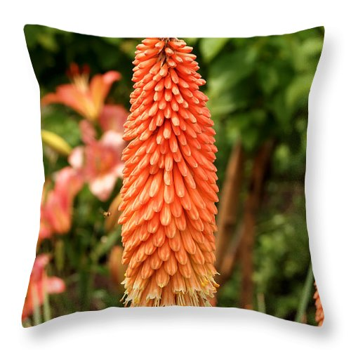Nature Throw Pillow featuring the digital art Orange Torch Lily by Eva Kaufman