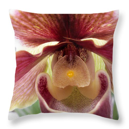 Macro Throw Pillow featuring the photograph Orchid Interior by Nancy Griswold