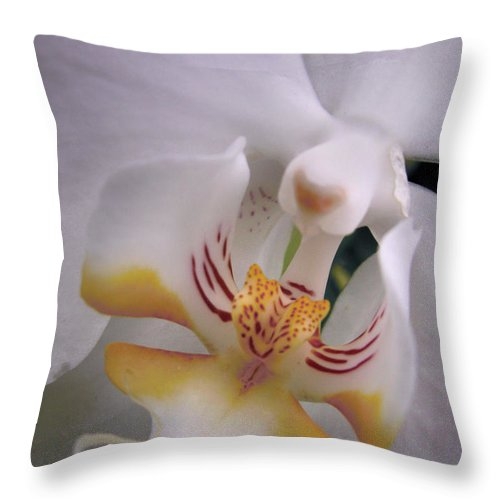 Orchid Throw Pillow featuring the photograph Orchid Close Up Two by Nancy Griswold