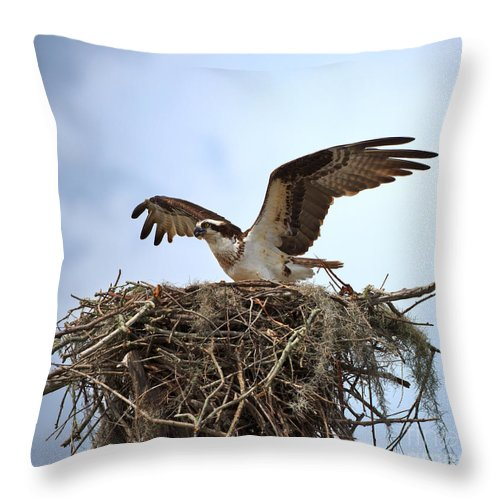 Osprey Throw Pillow featuring the photograph Osprey by Louise Heusinkveld