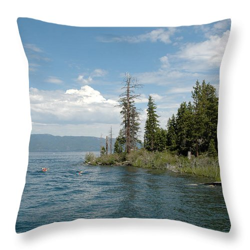 Usa Throw Pillow featuring the photograph Out Of The Blue by LeeAnn McLaneGoetz McLaneGoetzStudioLLCcom