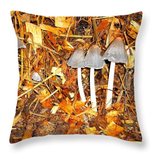 Mushrooms Throw Pillow featuring the photograph Out Of The Dark by Donald Black