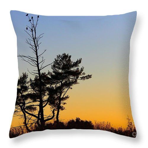 Tree Throw Pillow featuring the photograph Out On A Limb by Davandra Cribbie