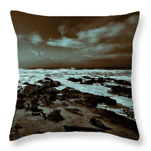 Pacific Ocean Throw Pillow featuring the photograph Out To Sea by Bonnie Bruno