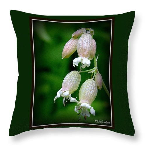 Bulb Throw Pillow featuring the photograph Outback by Priscilla Richardson