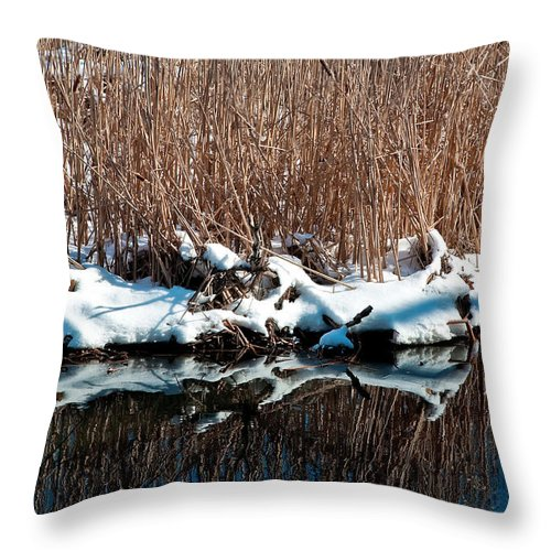 Water Throw Pillow featuring the photograph Outcrop by Burney Lieberman