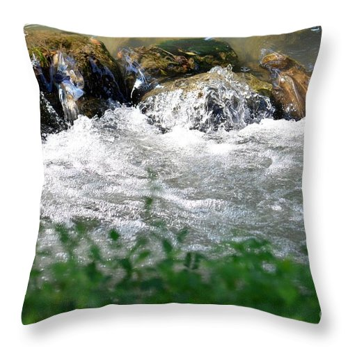 Stones Throw Pillow featuring the photograph Over The Stones The Water Flows by Maria Urso