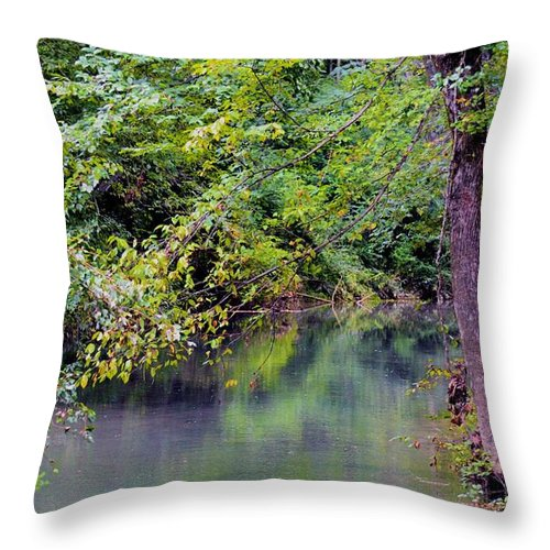 Overcast Throw Pillow featuring the photograph Overcast Reflections At Buck Creek by Maria Urso