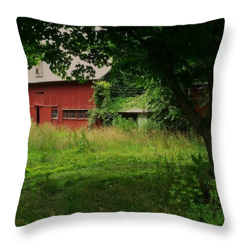 Red Barn Throw Pillow featuring the photograph Overgrown by Anna Villarreal Garbis