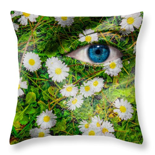Art Throw Pillow featuring the photograph Oxeye Daisy by Semmick Photo