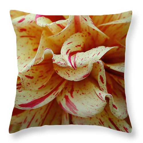 Outdoors Throw Pillow featuring the photograph Paint Spattered Petals by Susan Herber