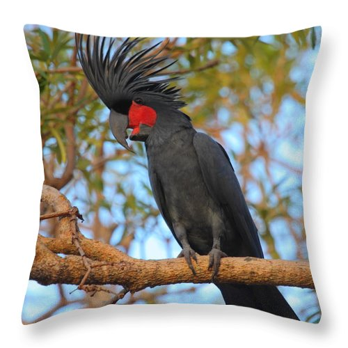 Cockatoo Throw Pillow featuring the photograph Palm Cockatoo by Bruce J Robinson