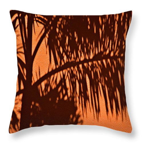 Palm Frond Throw Pillow featuring the photograph Palm Frond Abstract by Carolyn Marshall