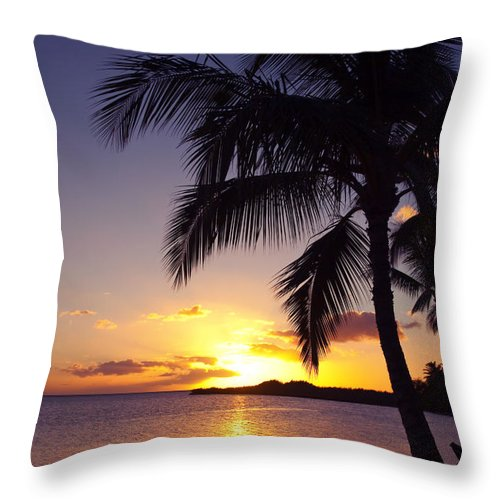 Beach Throw Pillow featuring the photograph Palm Sunset by Ron Dahlquist - Printscapes
