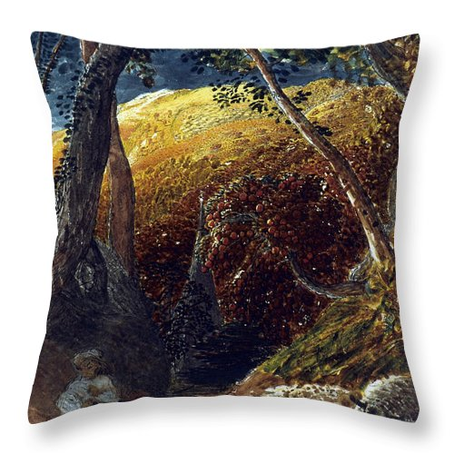 19th Century Throw Pillow featuring the photograph Palmer: Apple Tree by Granger