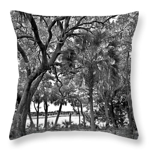 Trees Throw Pillow featuring the photograph Palms And Bridge by Susan Leggett