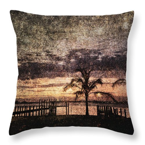 Absence Throw Pillow featuring the photograph Palms And Docks by Skip Nall