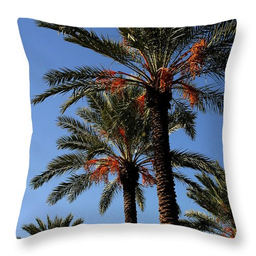 Gary Gingrich Throw Pillow featuring the photograph Palms9895b by Gary Gingrich Galleries