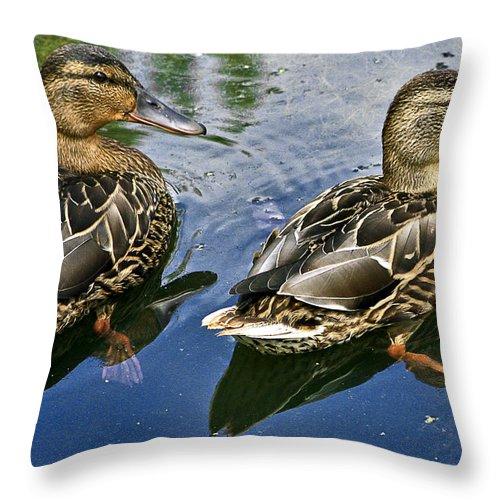 Ducks Throw Pillow featuring the photograph Pals by Burney Lieberman