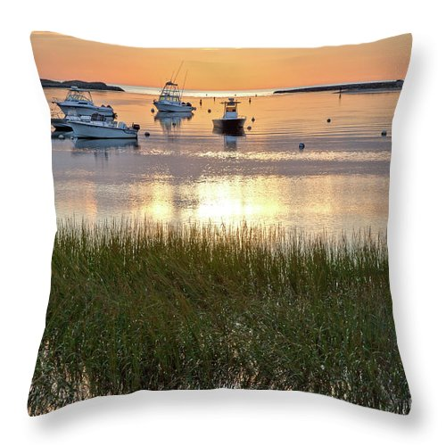 Barnstable County Throw Pillow featuring the photograph Pamet In Gold by Susan Cole Kelly