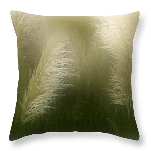 Pampas Throw Pillow featuring the mixed media Pampas Dream by Carol Cavalaris
