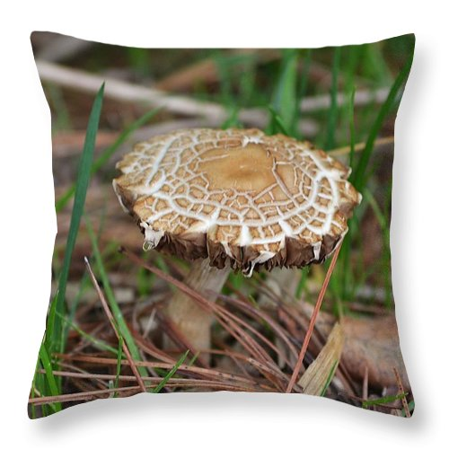 Mushroom Throw Pillow featuring the photograph Pancakes by Mary Zeman